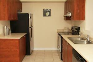 Luxury 1 Bedroom with 5 appliances including In-suite laundry! Cambridge Kitchener Area image 8