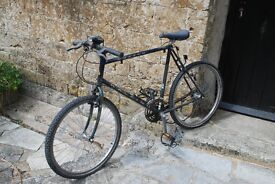 Raleigh Amazon 21 speed adult bike. Needs some tlc or for spares