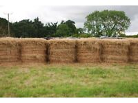 Hay for sale, large round bales approx. 3'x3'