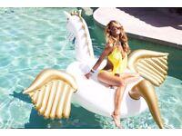 Giant Inflatable Pegasus.