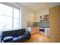 Lovely studio apartment in a stucco fronted building in Swiss Cottage