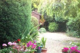 Garden Services, Gardener, Landscaping, Garden Tidy, Paving