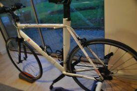Focus Triathlon Bike + Turbo Trainer