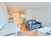 New 1 bedroom flat in the heart of Shoredith with an outside space