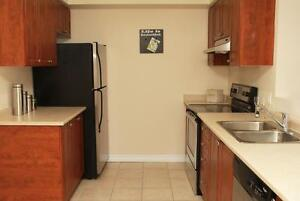 LARGE Luxury 2 Bedroom ~ Washer/Dryer INCLUDED! Cambridge Kitchener Area image 4