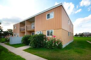 RENT A 3 BEDROOM FOR THE PRICE OF 2 - Close to WEM! Edmonton Edmonton Area image 10