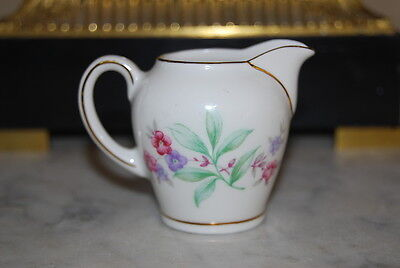 WONDERFUL ESCHENBACH GERMANY MINIATURE PORCELAIN FLOWER DECORATED SMALL CREAMER