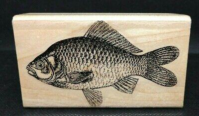 Stamp Cabana ~ Red Snapper Fish ~ Rubber Stamp I2