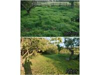 Quality Lawnmowing - Grass Cutting - Hedge Trimming - Gardener - Weeding