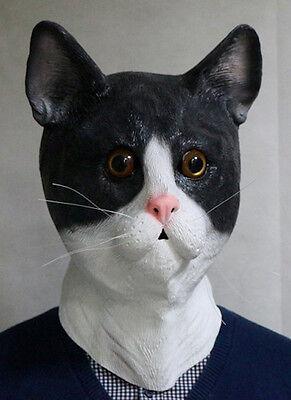 enmaske Latex Pussy Tier Kostüm Junggesellenabschied für (Katze Kostüme Für Jungs)