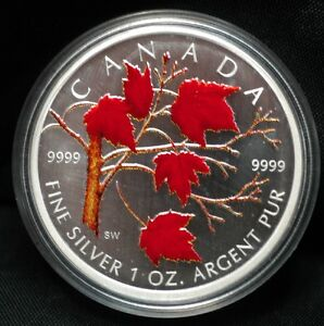 2001-2006 Coloured 1 oz Silver Maple Leaf Collector RCM Coins Edmonton Edmonton Area image 6