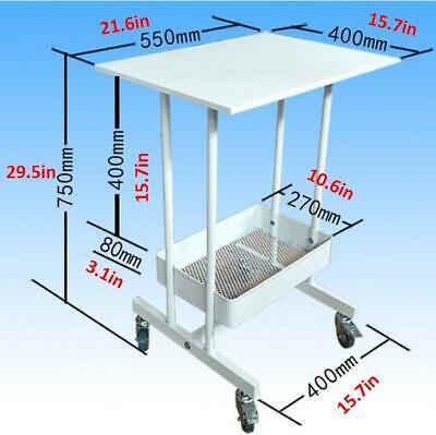Carbon Steel Cart Trolley For Trolly Spa Salon Equipment Two Shelf