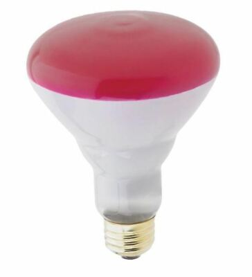 WESTINGHOUSE 04671 75W 130V BR30 PINK DIMMABLE REFLECTOR FLOOD LIGHT (130v Reflector Flood Light Bulb)