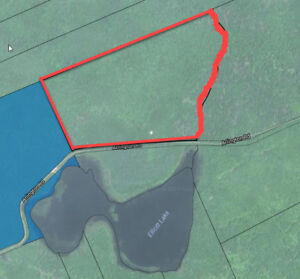 Mixed Woodland and Camp 55 Acres across from Lake in the valley