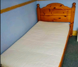 Pine single bed in excellent condition
