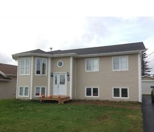 10 Pitcher Place, Clarenville
