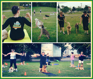 ***GET FIT and TRAIN YOUR DOG**