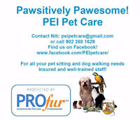 Dog walking and Pet sitting in Charlottetown and Cornwall