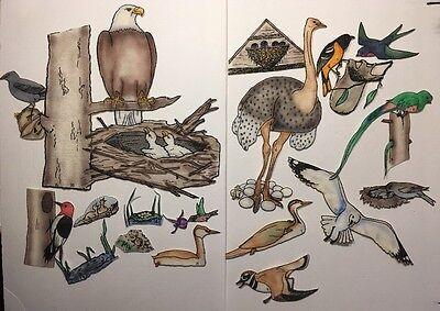 Felt Bird Set Flannel Graph Nature Creation Teaching Bible Class