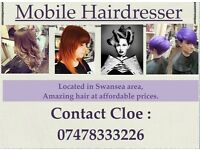 Mobile hairdresser Swansea