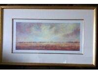 Framed print- limited edition