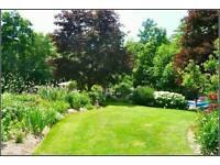 Cheap gardening work liverpool call for info 07919238938