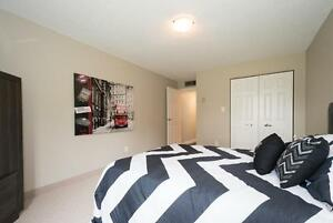 LARGE 2 Bedroom - Next to the University of Waterloo Kitchener / Waterloo Kitchener Area image 2