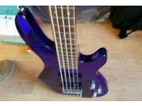 Wesley 5 string Bass Guitar -Rare- See - Thro Acrylic 24 fret