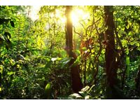 CHARITY CEILIDH (Rainforest Ceilidh), Sat 10th Dec, 7.30-11pm, Ticket prices start at £4!