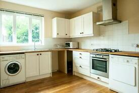 5 mins from St George's and underground - Elegant Spacious garden flat