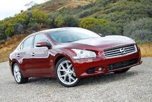 2009 Nissan Maxima 3,5 SV+CUIR+TOIT+LE MEILLEUR DEAL AU QC !!!