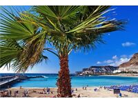 Holiday to gran canaria £500( still available)
