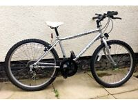 Bicycle - Child's Mountain Bike