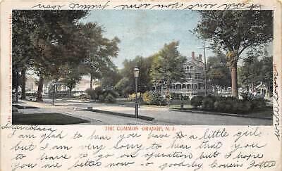 The Common Orange New Jersey 1905 postcard