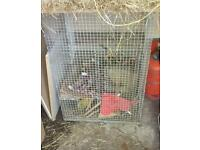 cage for degu