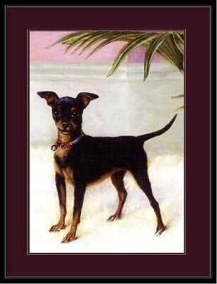 Picture Miniature Pinscher Rat Terrier Chihuahua Dog Art Vintage Poster Print ()