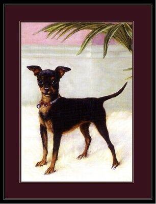 Picture Miniature Pinscher Rat Terrier Chihuahua Dog Art Vintage Poster Print Miniature Pinscher Art