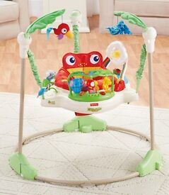 Reinforest jumperoo fisher price