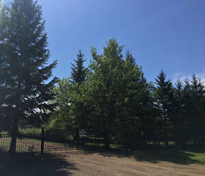 1 Acre For Sale 3 Minutes From St. Albert