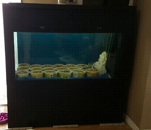 100G fish tank for sale