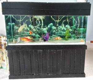 Large Fish tank with Cabinet and Canopy