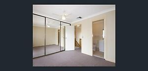 Large Master Bedroom for lease Northmead Parramatta Area Preview