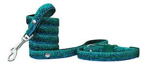 verde-e-blu-brillante-s-m-collare-per-cane-cucciolo-amp-guinzaglio-25-4-cm-38cm
