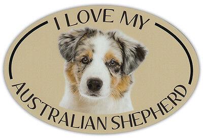 Oval Dog Breed Picture Car Magnet   I Love My Australian Shepherd  Aussie