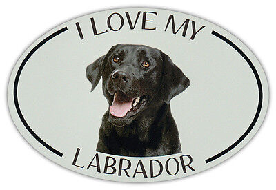 Oval Dog Breed Picture Car Magnet - I Love My Labrador (Black Lab) - Sticker ()