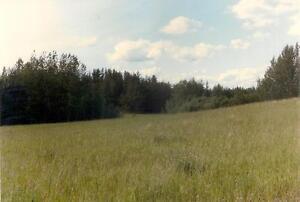 Land for sale Strathcona County Edmonton Area image 2