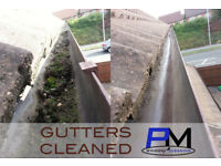 GUTTER CLEANING ( GUTTERS, SOFFITS, FASCIAS, SEALS, REPAIRS )