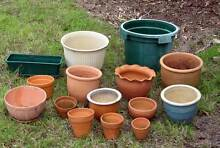 Assorted Garden Pots Arcadia Hornsby Area Preview