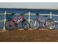 Two mountain bikes. Excellent condition
