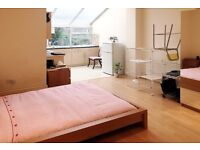 VERY SPACIOUS LOVELY STUDIO FLAT IN THE POPULAR AREA OF ACTON AVAILABLE FROM THE END OF FEBRUARY!